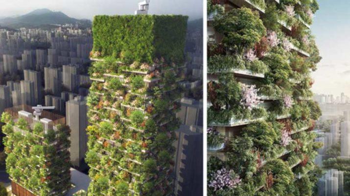 «Вертикальный лес» для выработки кислорода