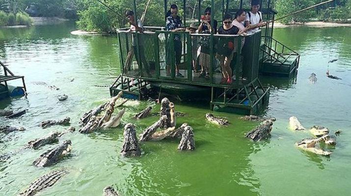 Самый страшный аттракцион в мире с крокодилами